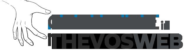 お客様のビジネススタイルの価値を大切にする企業THEVOSです。 THEVOSは、お客様との緊密な外部ITチームです。